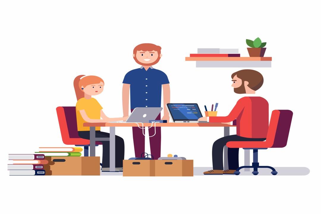 organização e gestão de startups
