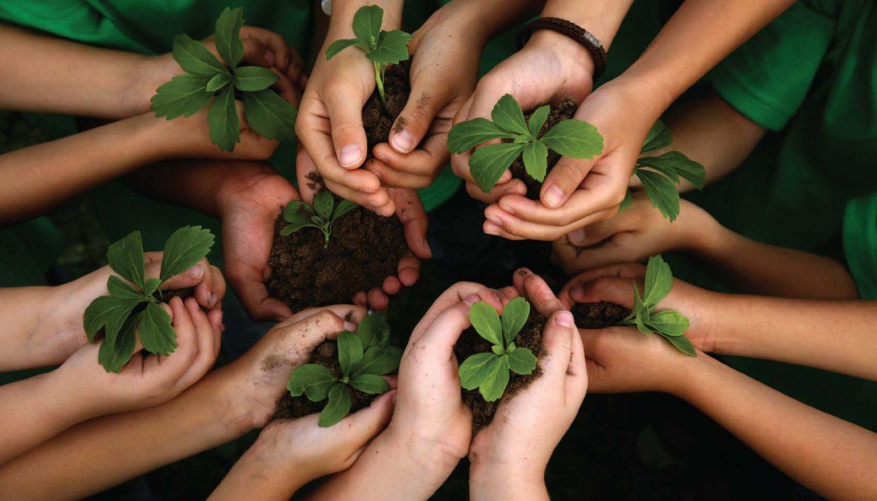 Meio-Ambiente-e1535640760255 Governo de SC x MPF - Como Restabelecer a Cooperação Ambiental?